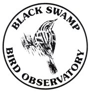 BSBO_logo 2