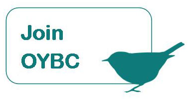 Join OYBC